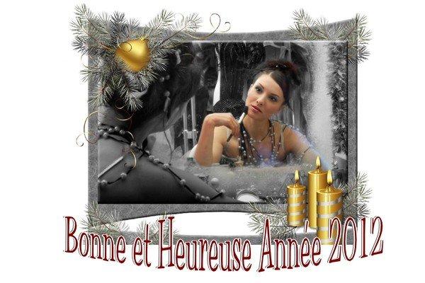Meilleurs-voeux-20122